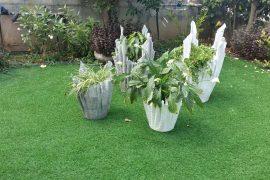 פשוט יפה: כלים דקורטיביים לצמחים